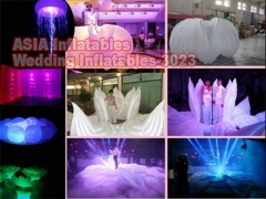 Wedding Party Inflatables