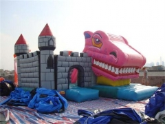 Snappy dragons castle