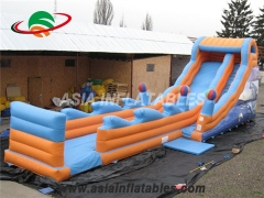 diapositiva inflable delfín seco