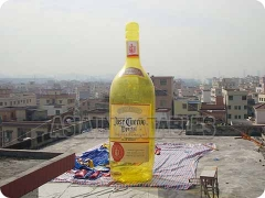 Yellow Bottle Model