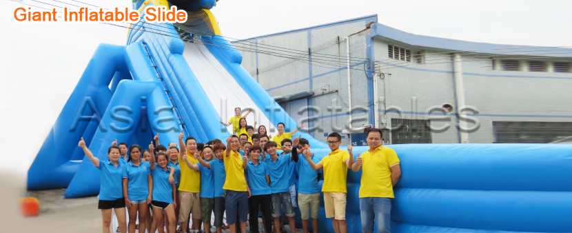 Giant Inflatable Slide for sale